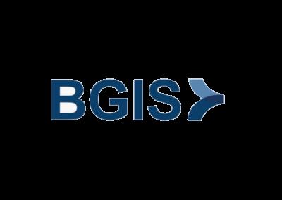 logo - bgis